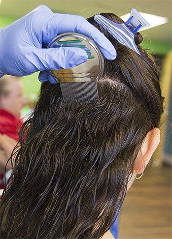 Прочёсывать волосы надо от корней к кончикам