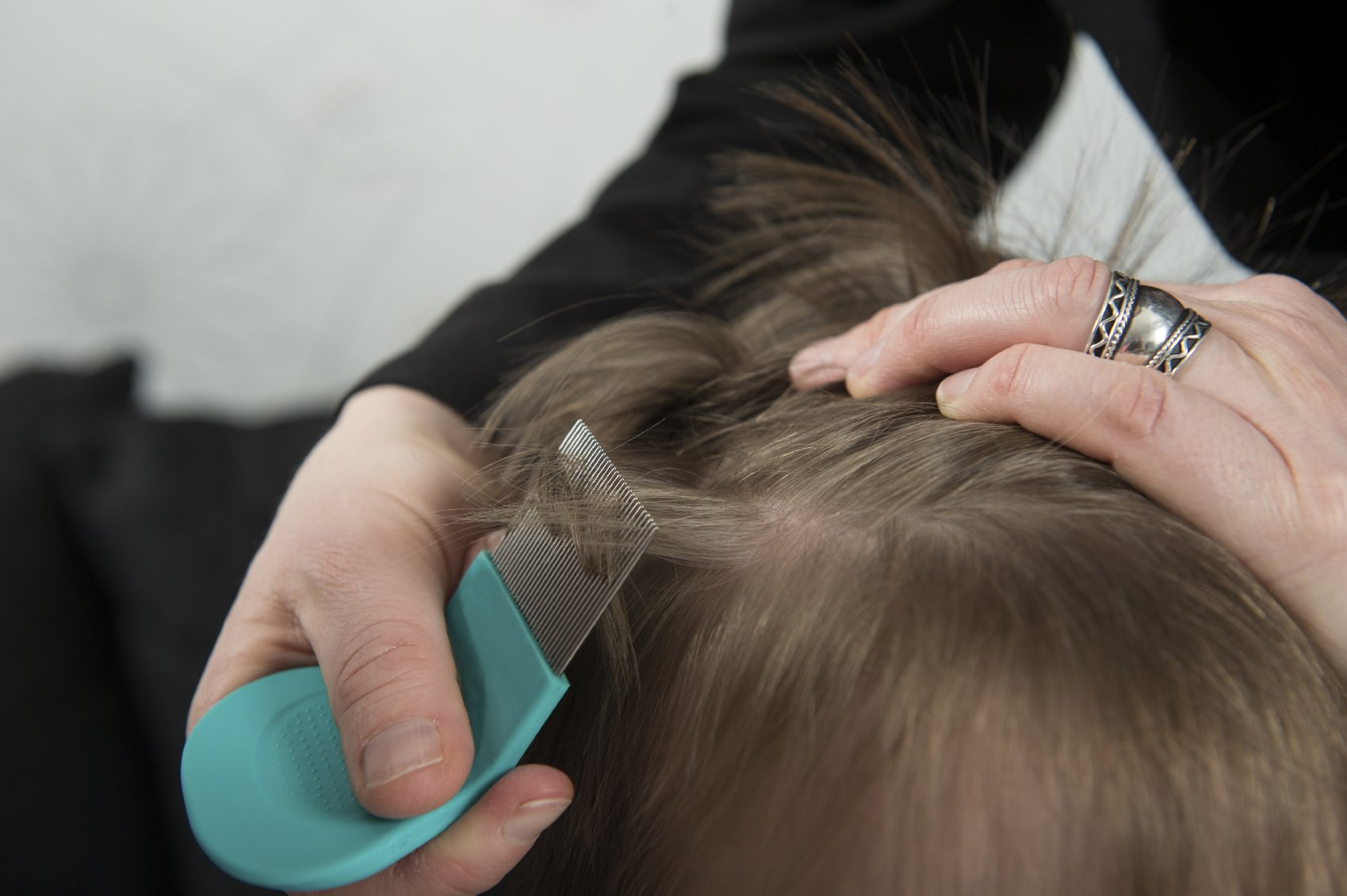 Педикулёз у детей – откуда берётся и как бороться с этой напастью