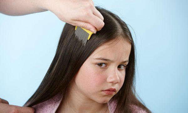 Вычёсывание вшей у девочки
