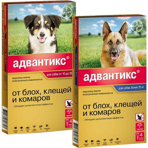 «Адвантикс» для собак