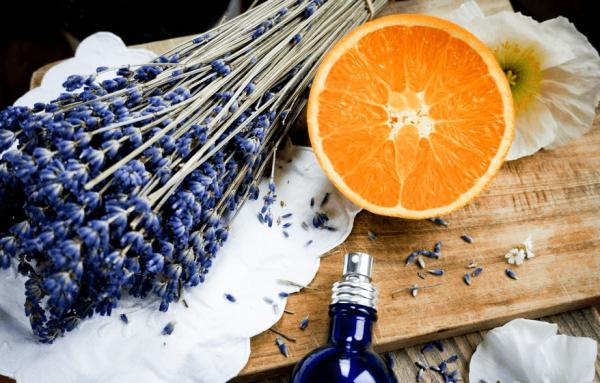 ветки лаванды апельсин