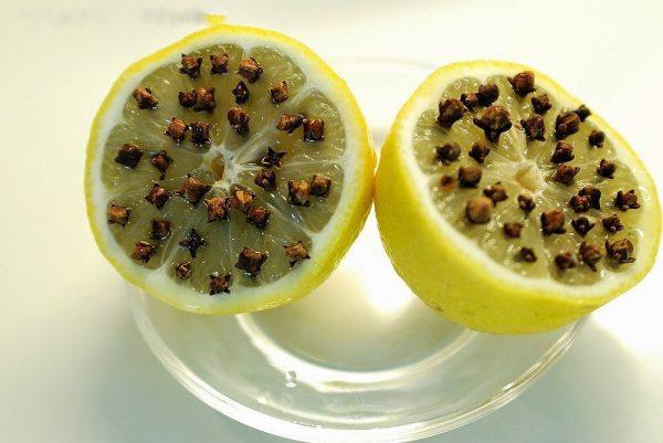 гвоздика и лимон от комаров
