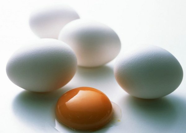 Яйца и яичный желток