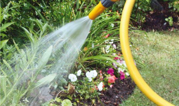 Участок поливают водой