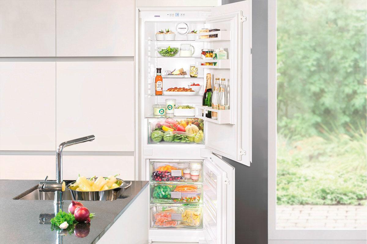 Выбираем холодильник: капельная разморозка или No frost