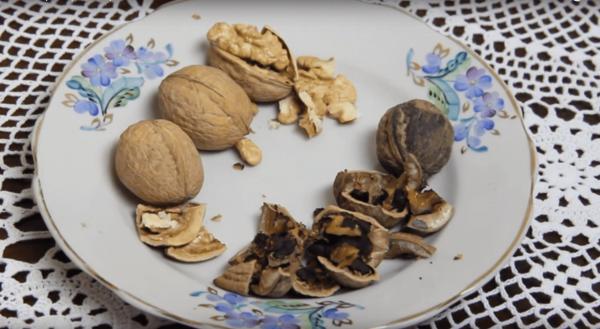 Грецкие орехи хорошего и плохого качества