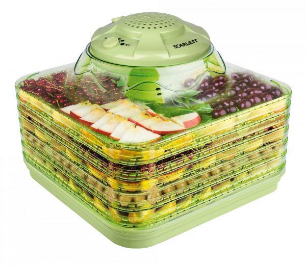 Конвекционная сушилка для фруктов и овощей
