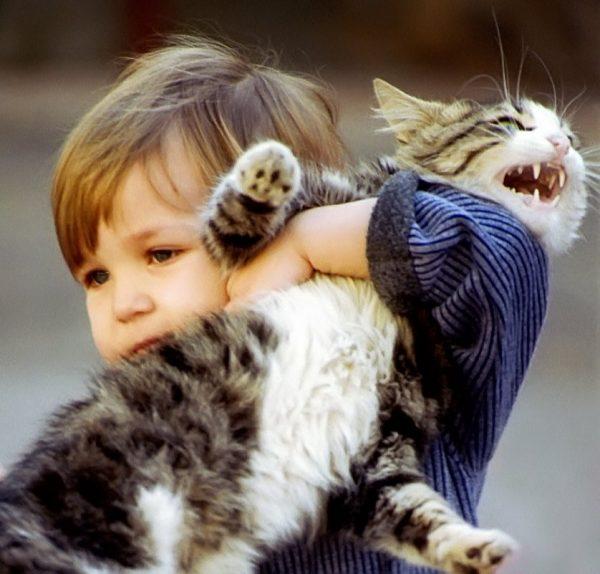 Мальчик и недовольный кот