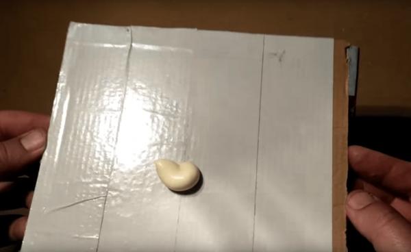 Самодельная ловушка из картона