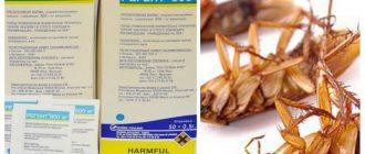 Регент от тараканов