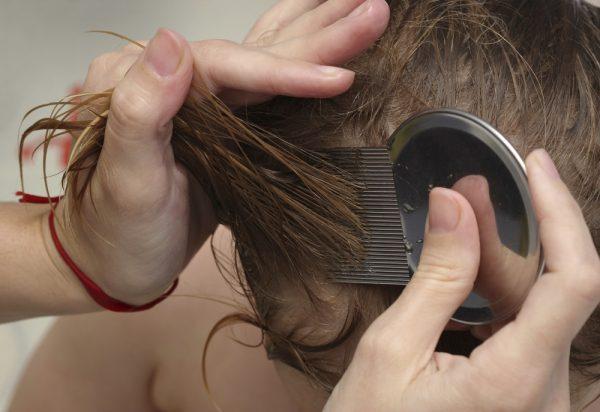 Женщина вычёсывает гребнем вшей