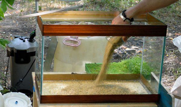 Помещение грунта в аквариум
