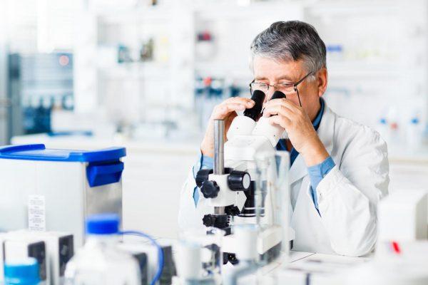 Специалист смотрит в микроскоп