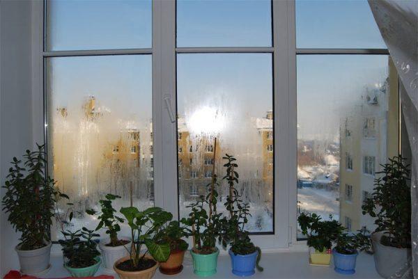 Комнатные окна