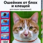 Ошейник для кошек Beaphar