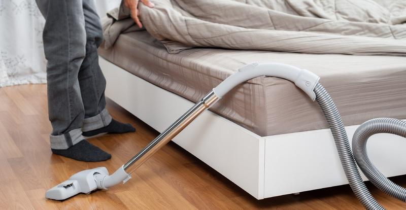 Борьба с клопами в домашних условиях