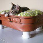 Кошка на лежаке, сделанном из чемодана