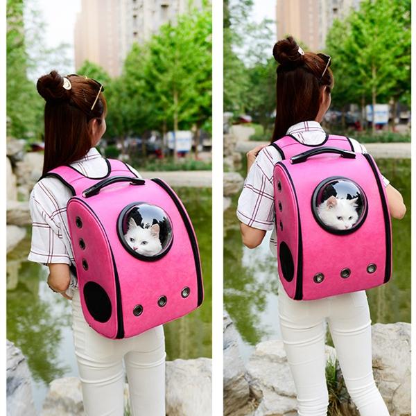 Девушка несёт кошку в рюкзаке