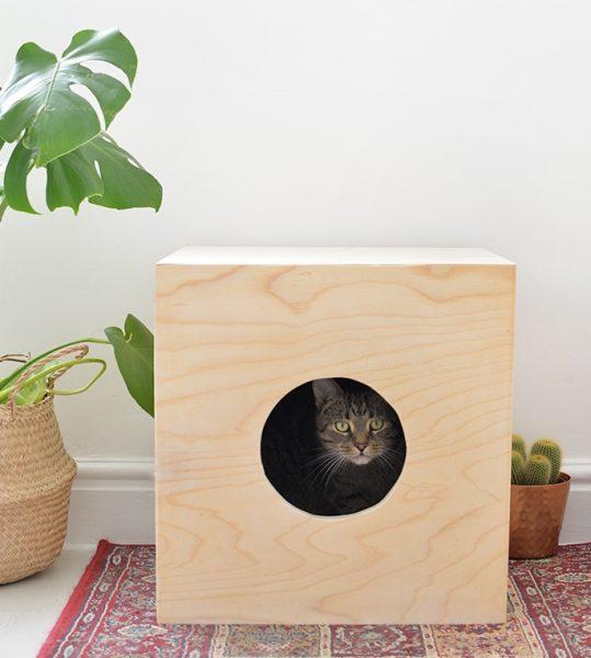 светлый фанерный куб с круглым отверстием и выглядывающим из него серым котом установлен на коврике в комнате