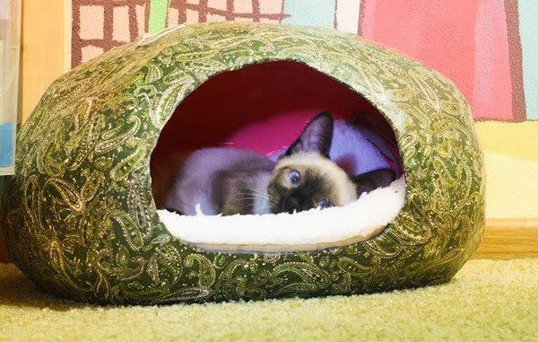 домик в форме кокона из папье-маше покрыт цветастым сатином, внутри на белой подстилке лежит сиамский котёнок