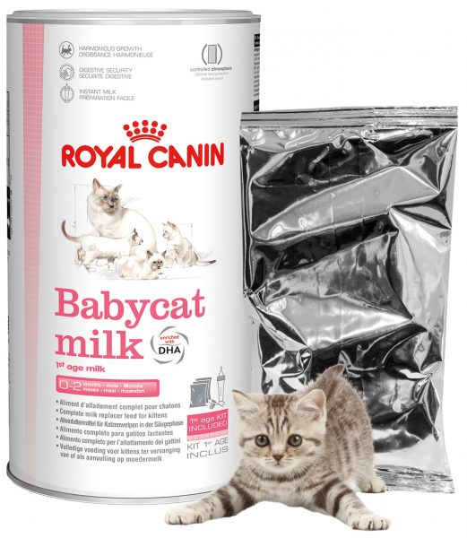 Royal Canin BabycatMilk